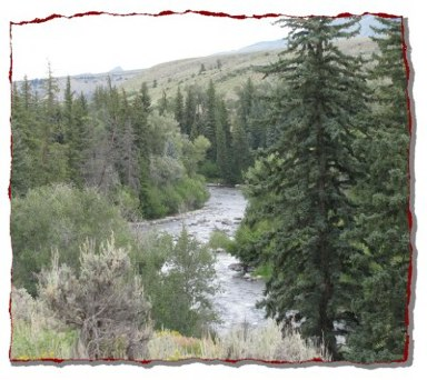 Blue River, Gold Medal Trout waters, about a mile from the Melody Lodge Cabins.